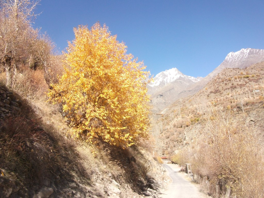 Places to see in Lahaul