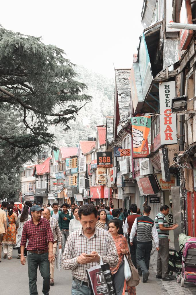 what to buy in shimla